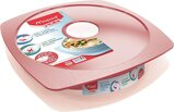 Maped Picnik Concept Adult Leakproof Lunch Plate One Size 870202