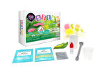 Brain Giggles Jelly Bugs Science Experiment Kit