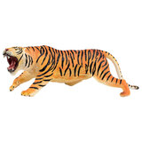 National Geographic  Beal Tiger